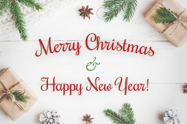 Merry Christmas And Happy New Year.We Wish You A Merry Christmas And A Happy New Year F H